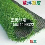 草坪-草皮