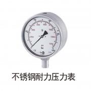 不锈钢耐力压力表