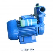 WZB(S)型旋涡式自吸电泵