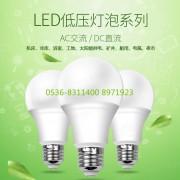 潍坊豪德低压led灯泡  led灯泡批发