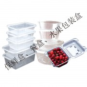 保鲜盒、餐盒、水果包装盒