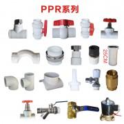 PPR系列