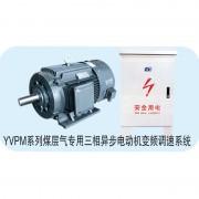 煤层气专用三相异步电动机变频调速系统